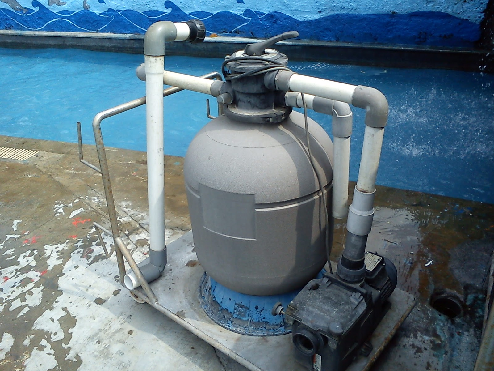eco kleer sand filter owners manual
